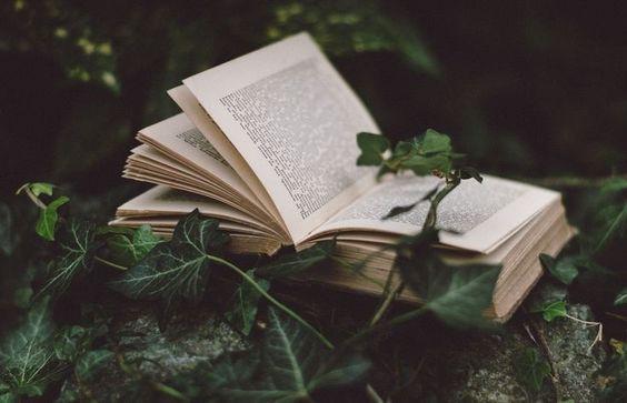 Страшные рассказы: 2 истории от Эдгара По и Стивена Кинга